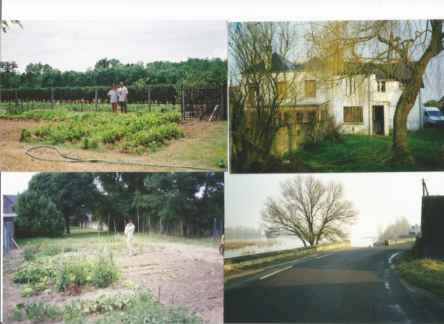 Scan_20200509