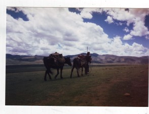 Nomads on the Tibetan Plateau.